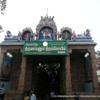 Tiru Aappudayar, Sellur, Madurai